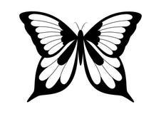 czarny motyli elegancki biel Zdjęcie Royalty Free