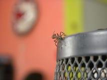 Czarny mrówki odprowadzenie na kruszcowym ołówkowym właścicielu fotografia royalty free