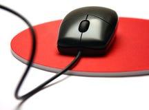 czarny mysz Zdjęcia Stock