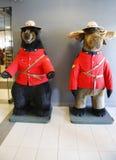 Czarny niedźwiedź i łoś amerykański ubieraliśmy w Królewski kanadyjczyk Wspinającym się policja mundurze w Jaspisowym parku narod obrazy stock
