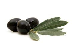 czarny oliwki zdjęcia stock