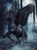 Czarny oskrzydlony koń ilustracja wektor