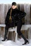 czarny płaszcz futra, Obraz Royalty Free