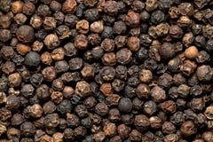 Czarny Peppercorn fotografia stock