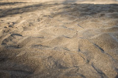 czarny piasek na plaży Obrazy Stock