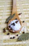 czarny pieprzu soli morza łyżka drewniana Zdjęcia Stock