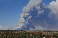 Czarny pożar lasu zdjęcia stock
