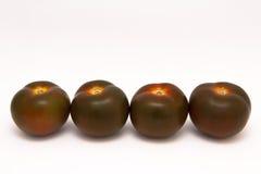 czarny pomidory Zdjęcia Royalty Free
