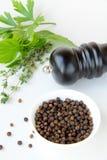 czarny pucharu ziele pieprz Fotografia Stock