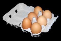 czarny pudełka jajka odizolowywali sześć Zdjęcia Royalty Free