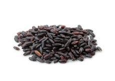 czarny ryż Obrazy Royalty Free