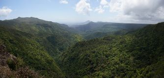 Czarny rzeczny wąwóz, Mauritius zdjęcia royalty free
