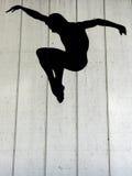 czarny skoczek zdjęcie stock
