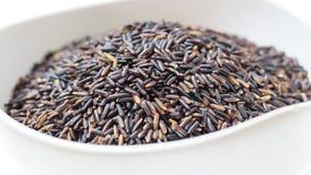 czarny thai ryżu Fotografia Stock