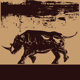 czarny tło nosorożec Zdjęcie Stock