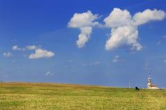 czarny trawy baranka niebo obraz stock