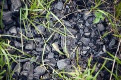 Czarny węgiel, długa lewica na ziemi fotografia royalty free