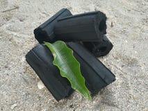 Czarny węgiel drzewny na piasku i władza ogień Zdjęcia Stock