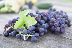 Czarny winogrona   Zdjęcie Stock