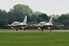 Czarny orły T-50 Obraz Royalty Free