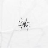 Czarny zabawkarski pająk na pajęczynie Zdjęcie Royalty Free
