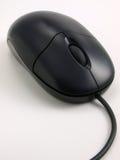 czarny zakrzywione mysz ogon Obraz Stock