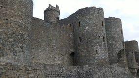 czarny zamek szachów kawałek refleksje white Obraz Stock