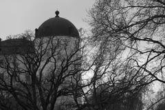 czarny zamek szachów kawałek refleksje white Obraz Royalty Free