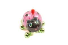 czarny zielona biedronki menchii zabawka Zdjęcie Stock