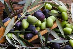 czarny zielona oliwka Obraz Royalty Free