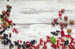 Czarnych i czerwonych rodzynków agresty na białym drewnianym tle Fotografia Stock