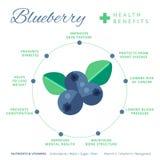 Czarnych jagod świadczenia zdrowotne i odżywiania infographics Superfood ilustracja wektor