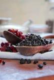 czarnych jagod cranberries suszyli Fotografia Stock