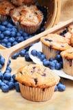 czarnych jagod muffins Zdjęcia Stock