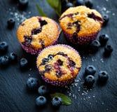 Czarnych jagod muffins z dodatkiem kokosowi płatki na ciemnym tle pyszny deser Obrazy Stock