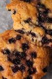 czarnych jagod piec muffins świeżo Obrazy Stock