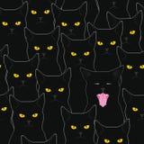 Czarnych kotów wzór Zdjęcie Royalty Free