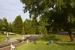 Czarodziejka ogród Obrazy Stock