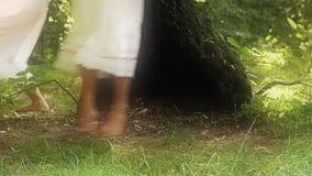 Czarodziejki las zbiory wideo