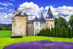 Czarodziejscy kasztele Francja fotografia stock