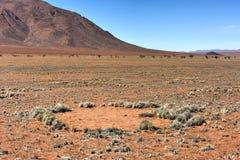 Czarodziejscy okręgi - Namibia fotografia royalty free