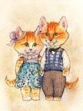 Czarodziejska para koty Para czerwone puszyste figlarki z różowym shu obraz stock