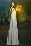 Czarodziejska piękna kobieta w magicznym lesie Zdjęcie Royalty Free