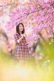 Czarodziejska portret młoda dziewczyna nastoletnia w szkockiej kracie Zdjęcie Royalty Free