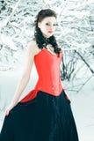 czarodziejska zima Zdjęcie Royalty Free
