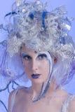 czarodziejska zima Fotografia Stock