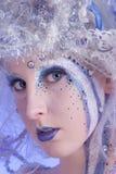 czarodziejska zima Zdjęcia Royalty Free