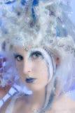 czarodziejska zima Obraz Stock
