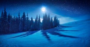 Czarodziejska zimy noc w halnej dolinie Zdjęcia Royalty Free