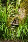Czarodziejski drzewny dom Zdjęcia Royalty Free
